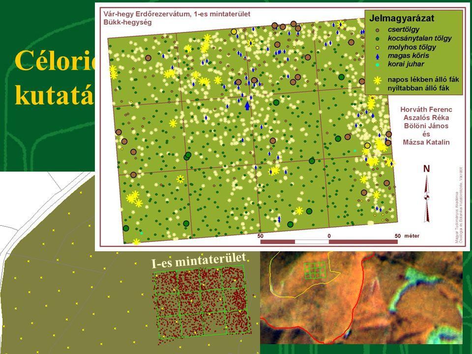 védőzóna Felsőtárkány Várkút I-es mintaterület Célorientált kutatás