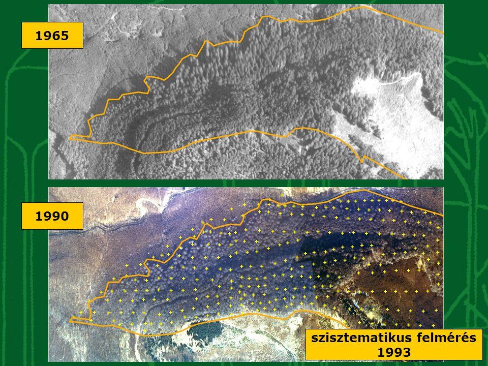 Köszönetnyilvánítás A kutatásokat a KvVM Természetvédelmi Hivatal és az Őrségi Nemzeti Park Igazgatóság támogatta továbbá a Nyugat-Magyarországi Egyetem EMK Növénytani és Termőhelyismerettani Intézet Termőhelyismerettani Intézeti Tanszék Geomatikai és Mérnöki Létesítmények Intézet Földmérési és Távérzékelési Tanszék Erdő- és Faanyagvédelmi Intézet Erdővagyon- gazdálkodási Intézet Erdőrendezés Tanszék és a Vásárhelyi István Természetvédelmi Kör További információk: www.erdorezervatum.hu mazsa@botanika.hu; horvfe@botanika.hu