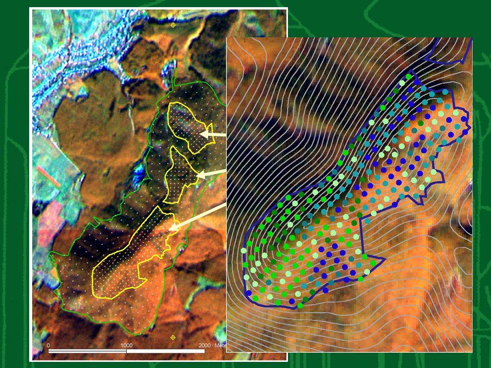 Talajtípusok Vár-hegy ER