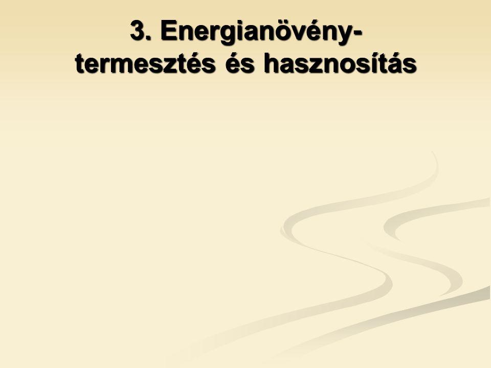 3. Energianövény- termesztés és hasznosítás