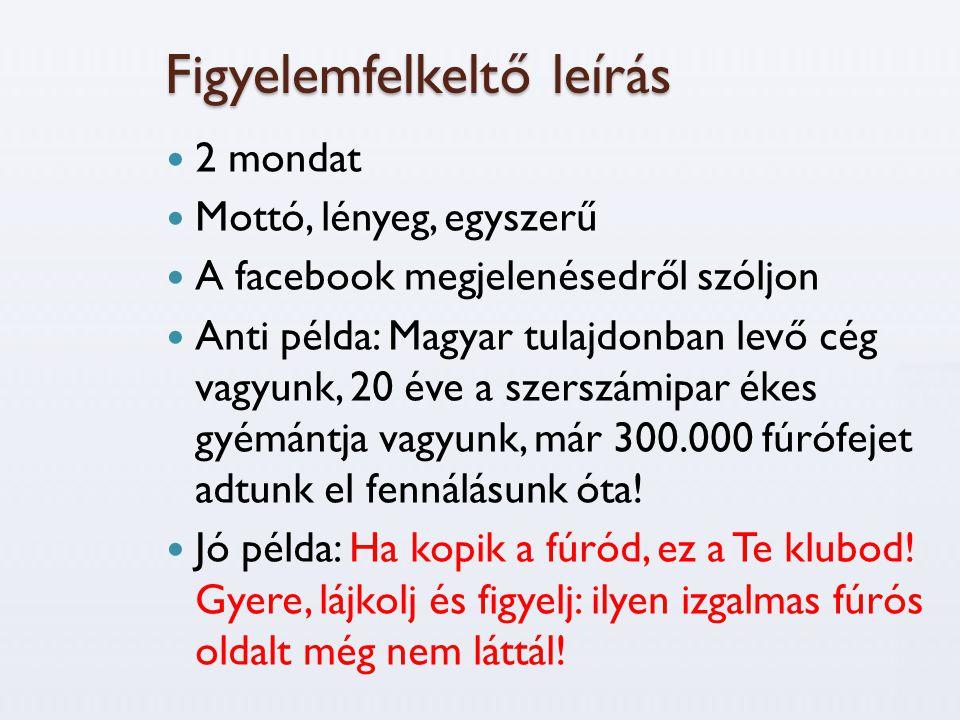 Figyelemfelkeltő leírás  2 mondat  Mottó, lényeg, egyszerű  A facebook megjelenésedről szóljon  Anti példa: Magyar tulajdonban levő cég vagyunk, 20 éve a szerszámipar ékes gyémántja vagyunk, már 300.000 fúrófejet adtunk el fennálásunk óta.