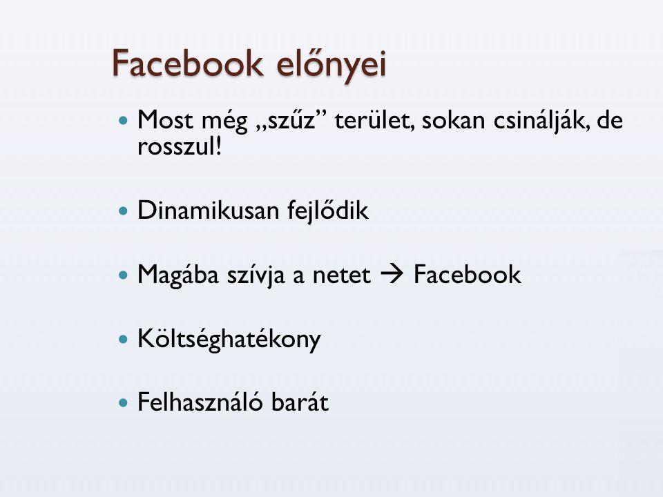 """Facebook előnyei  Most még """"szűz"""" terület, sokan csinálják, de rosszul!  Dinamikusan fejlődik  Magába szívja a netet  Facebook  Költséghatékony """