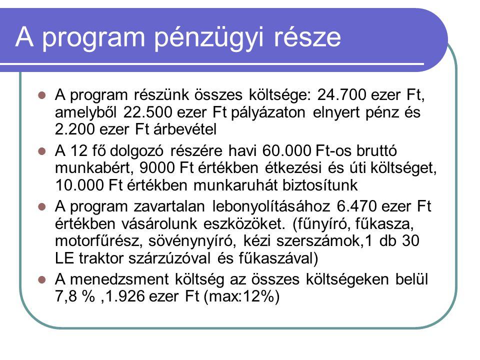 A program pénzügyi része  A program részünk összes költsége: 24.700 ezer Ft, amelyből 22.500 ezer Ft pályázaton elnyert pénz és 2.200 ezer Ft árbevét