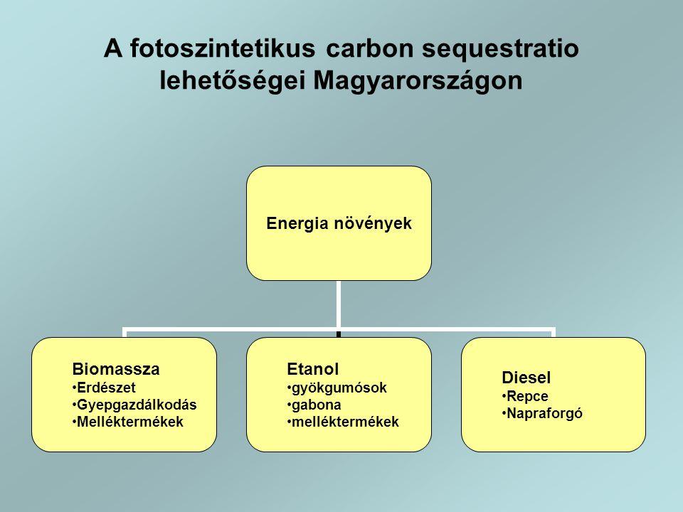 A fotoszintetikus carbon sequestratio lehetőségei Magyarországon Energia növények Biomassza •Erdészet •Gyepgazdálkodás •Melléktermékek Etanol •gyökgumósok •gabona •melléktermékek Diesel •Repce •Napraforgó