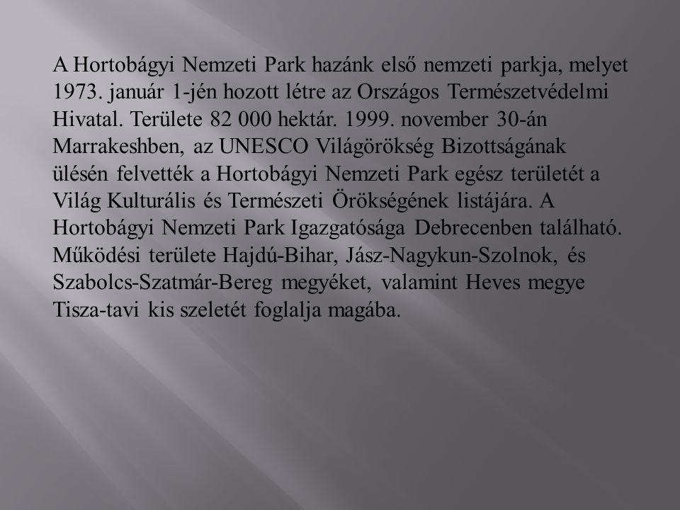 A Hortobágyi Nemzeti Park hazánk első nemzeti parkja, melyet 1973.