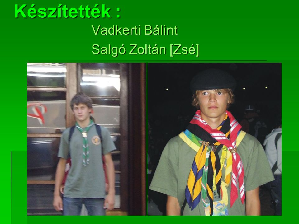 Készítették : Vadkerti Bálint Salgó Zoltán [Zsé]
