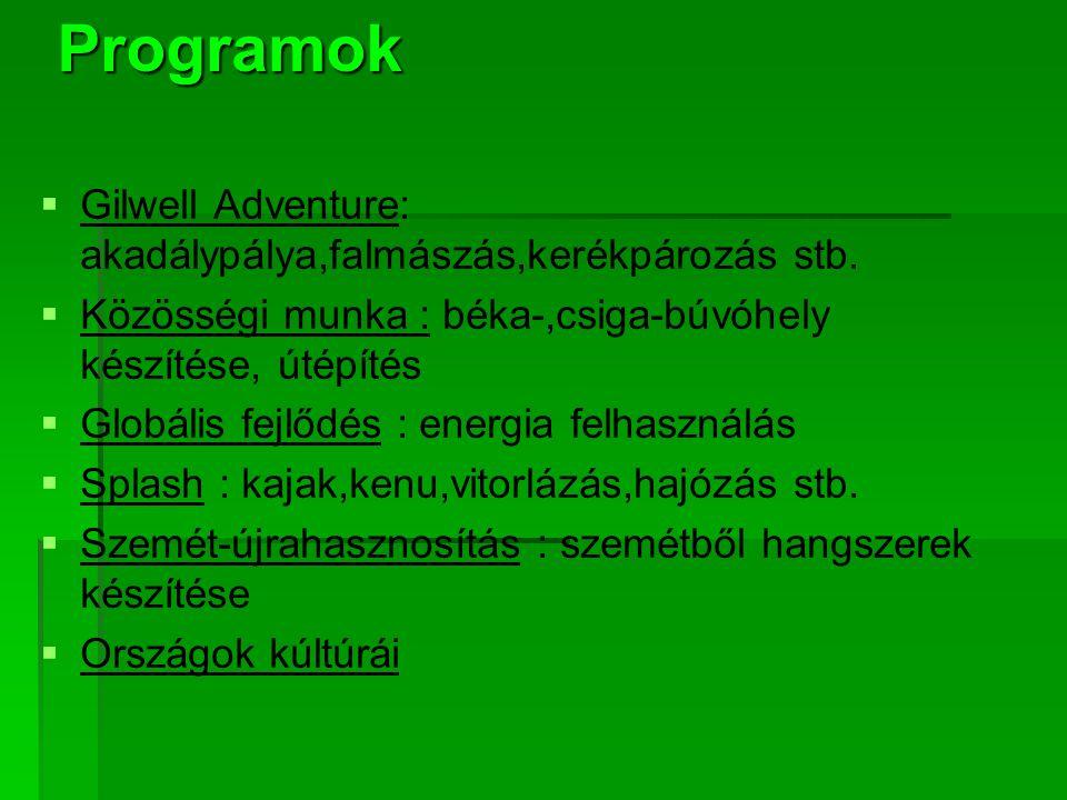 www.dzsemboricsap at.hu