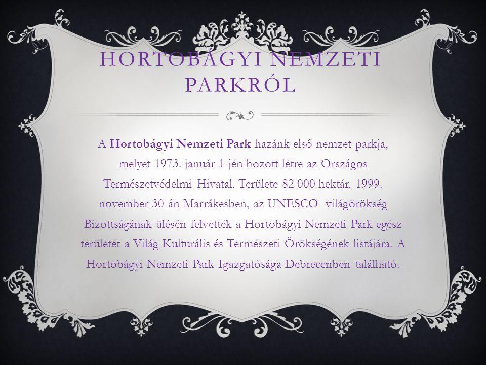 HORTOBÁGYI NEMZETI PARKRÓL A Hortobágyi Nemzeti Park hazánk első nemzet parkja, melyet 1973.