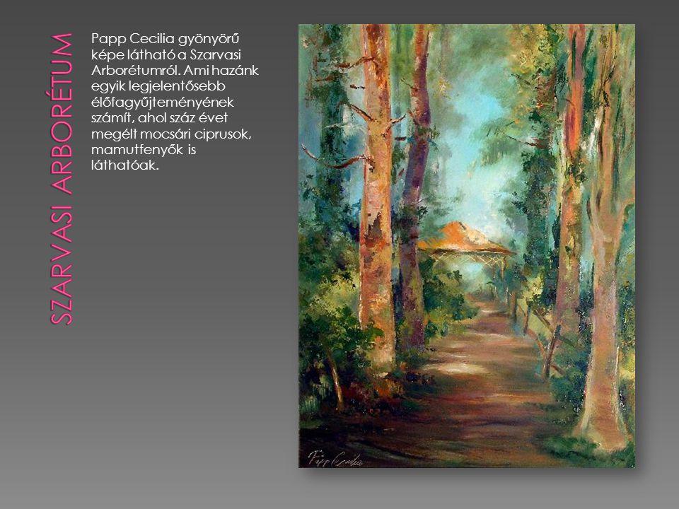 Papp Cecilia gyönyörű képe látható a Szarvasi Arborétumról.
