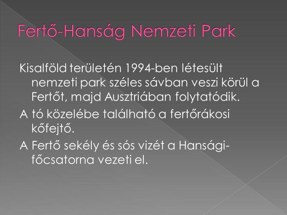 Kisalföld területén 1994-ben létesült nemzeti park széles sávban veszi körül a Fertőt, majd Ausztriában folytatódik.