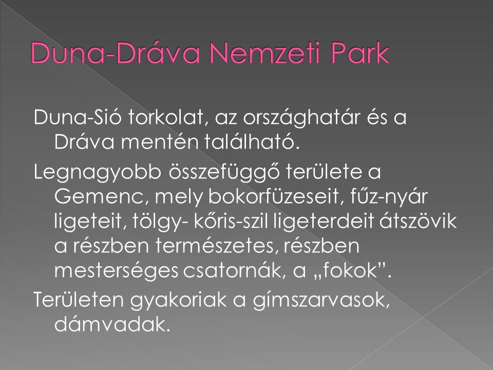 Duna-Sió torkolat, az országhatár és a Dráva mentén található.