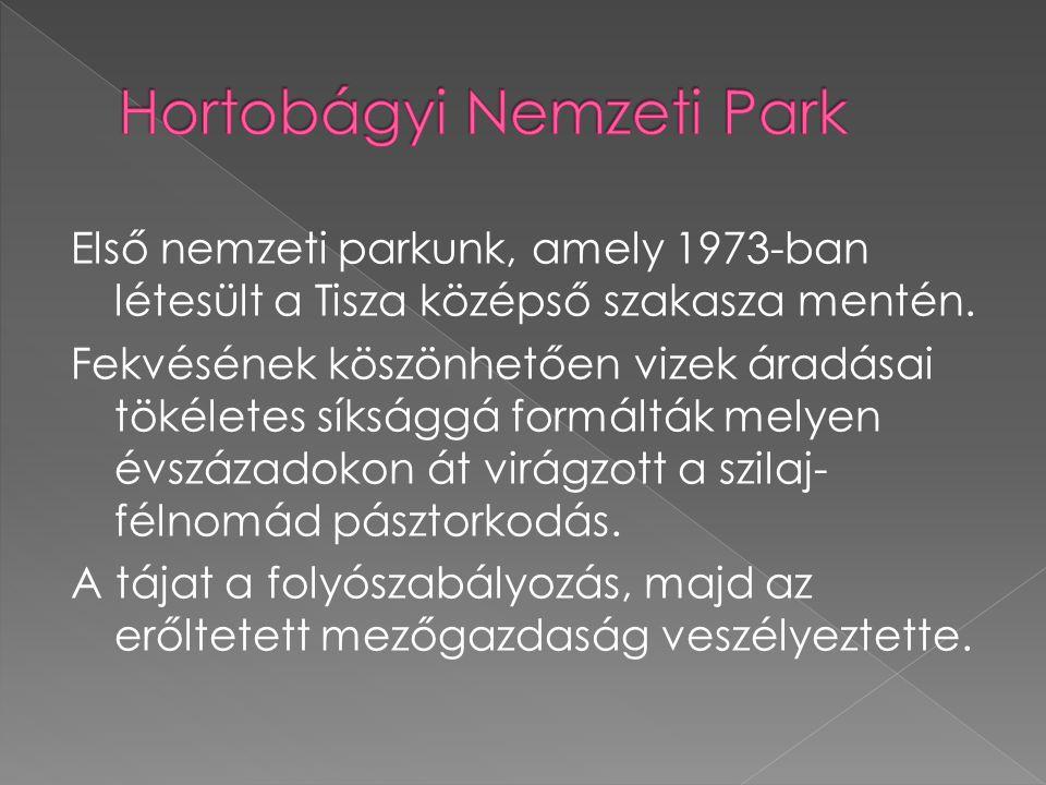 Első nemzeti parkunk, amely 1973-ban létesült a Tisza középső szakasza mentén.
