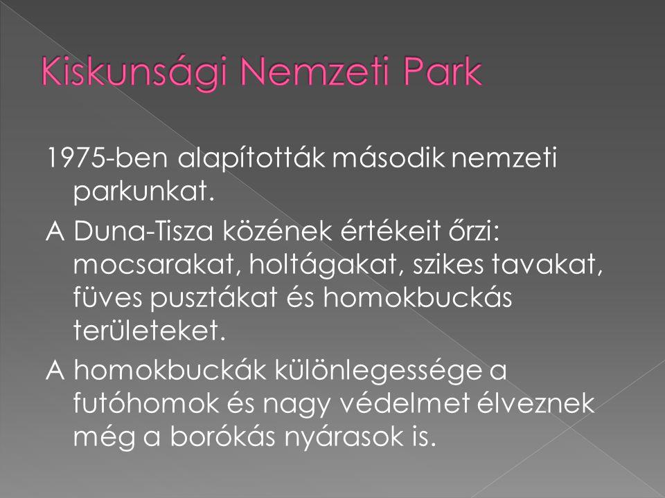 1975-ben alapították második nemzeti parkunkat.