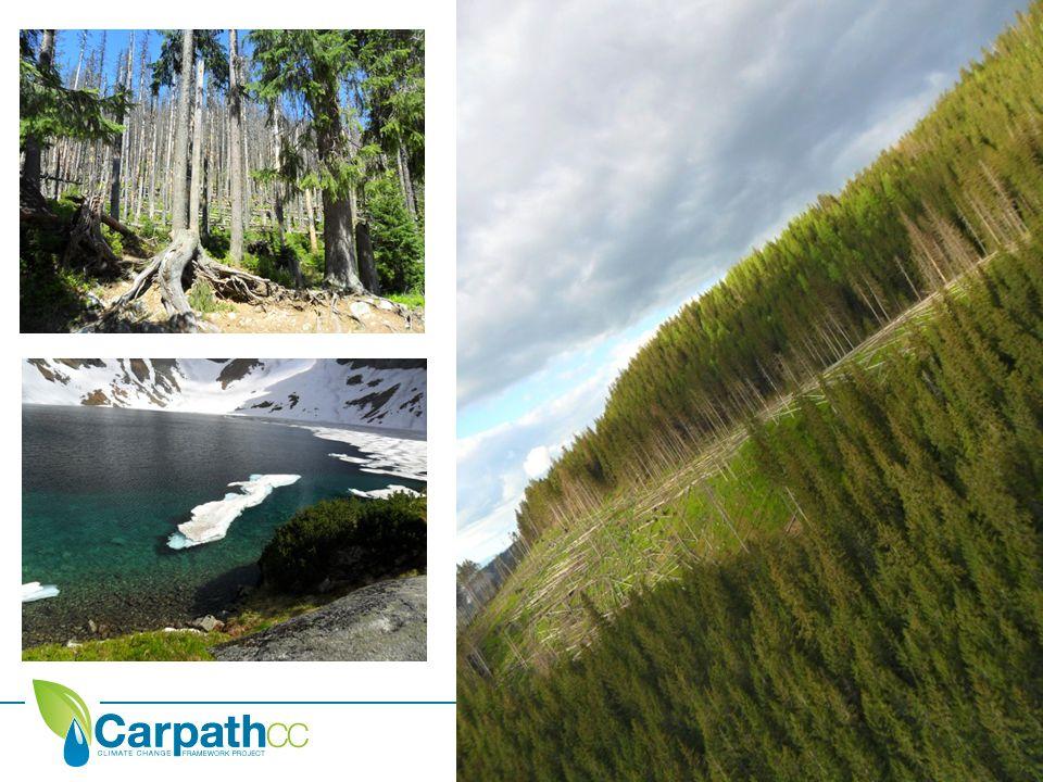 A PROJEKT CÉLJAI A CarpathCC projekt célja, hogy részleteiben elemezze a Kárpát- régió sérülékenységét a klímaváltozás hatásaira vonatkozólag, valamint erre építve összeállítson egy adaptációs intézkedési portfóliót.