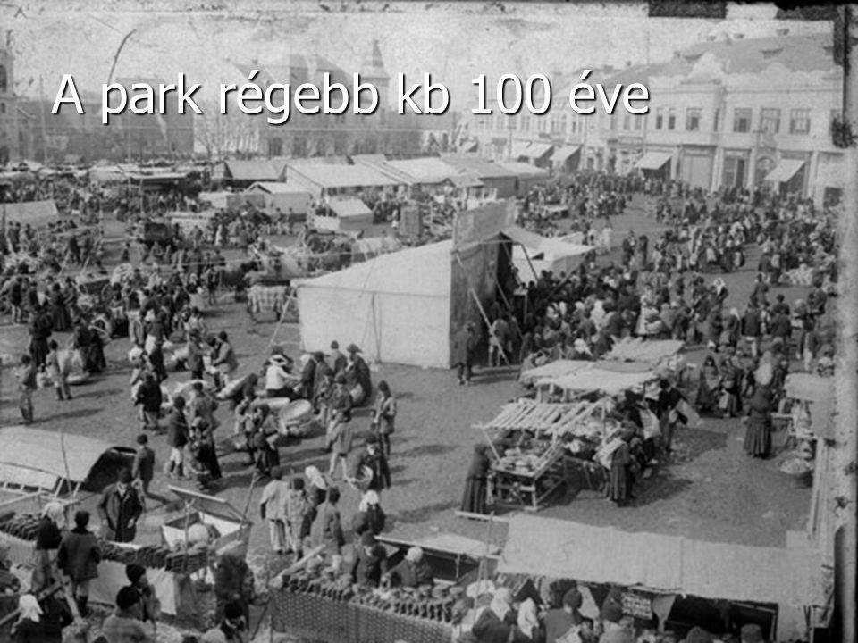 A park régebb kb 100 éve