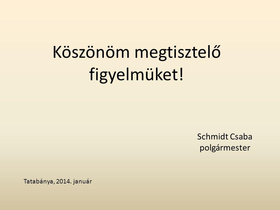 Köszönöm megtisztelő figyelmüket! Schmidt Csaba polgármester Tatabánya, 2014. január