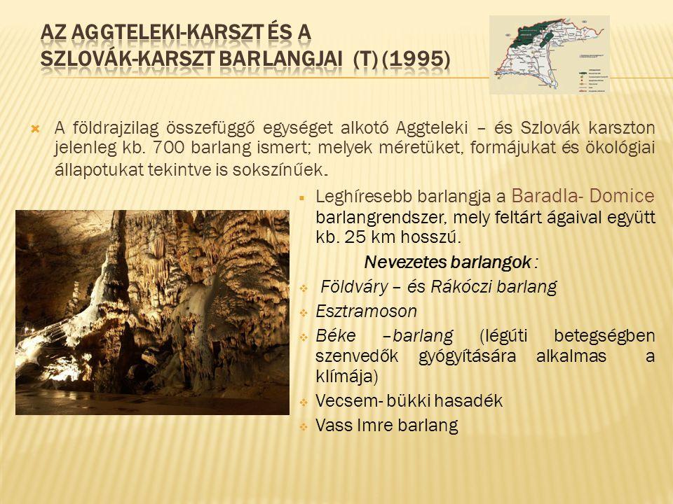  A földrajzilag összefüggő egységet alkotó Aggteleki – és Szlovák karszton jelenleg kb. 700 barlang ismert; melyek méretüket, formájukat és ökológiai