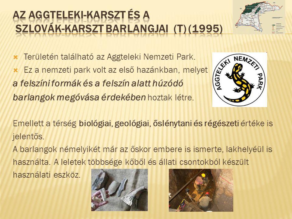  Területén található az Aggteleki Nemzeti Park.  Ez a nemzeti park volt az első hazánkban, melyet a felszíni formák és a felszín alatt húzódó barlan