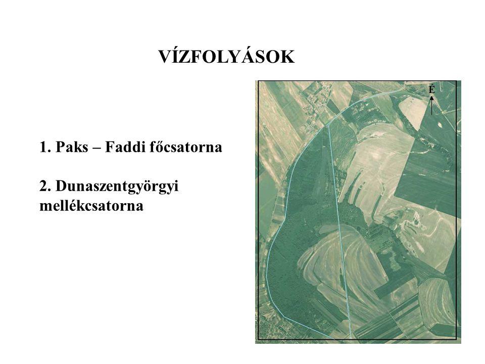 VÍZFOLYÁSOK 1. Paks – Faddi főcsatorna 2. Dunaszentgyörgyi mellékcsatorna É