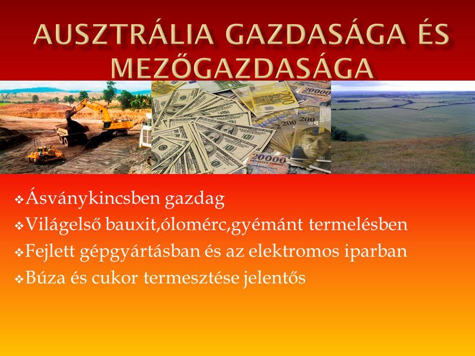  Ásványkincsben gazdag  Világelső bauxit,ólomérc,gyémánt termelésben  Fejlett gépgyártásban és az elektromos iparban  Búza és cukor termesztése je