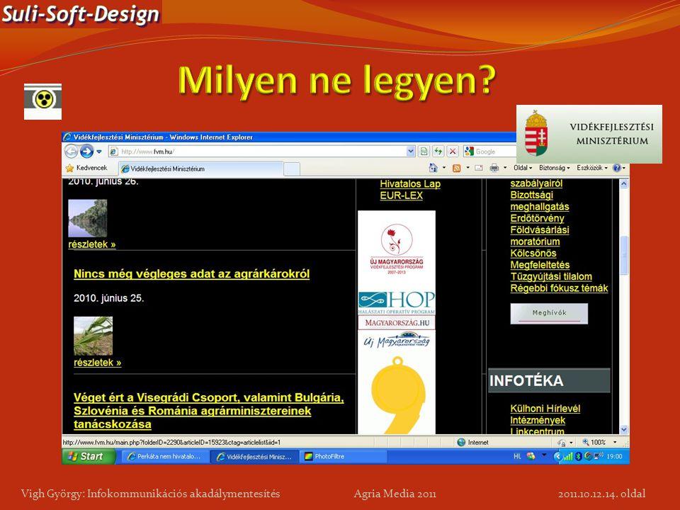 14. oldal Vigh György: Infokommunikációs akadálymentesítés Agria Media 2011 2011.10.12.