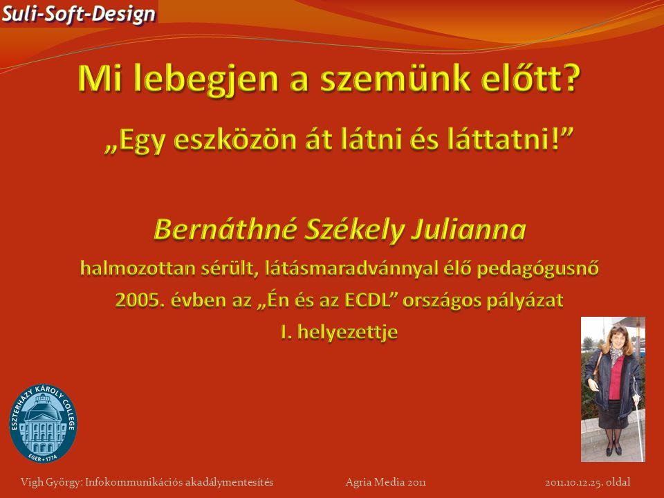 25. oldal Vigh György: Infokommunikációs akadálymentesítés Agria Media 2011 2011.10.12.