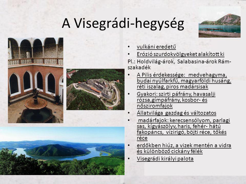 A Visegrádi-hegység • vulkáni eredetű • Erózió szurdokvölgyeket alakított ki Pl.: Holdvilág-árok, Salabasina-árok Rám- szakadék • A Pilis érdekessége: