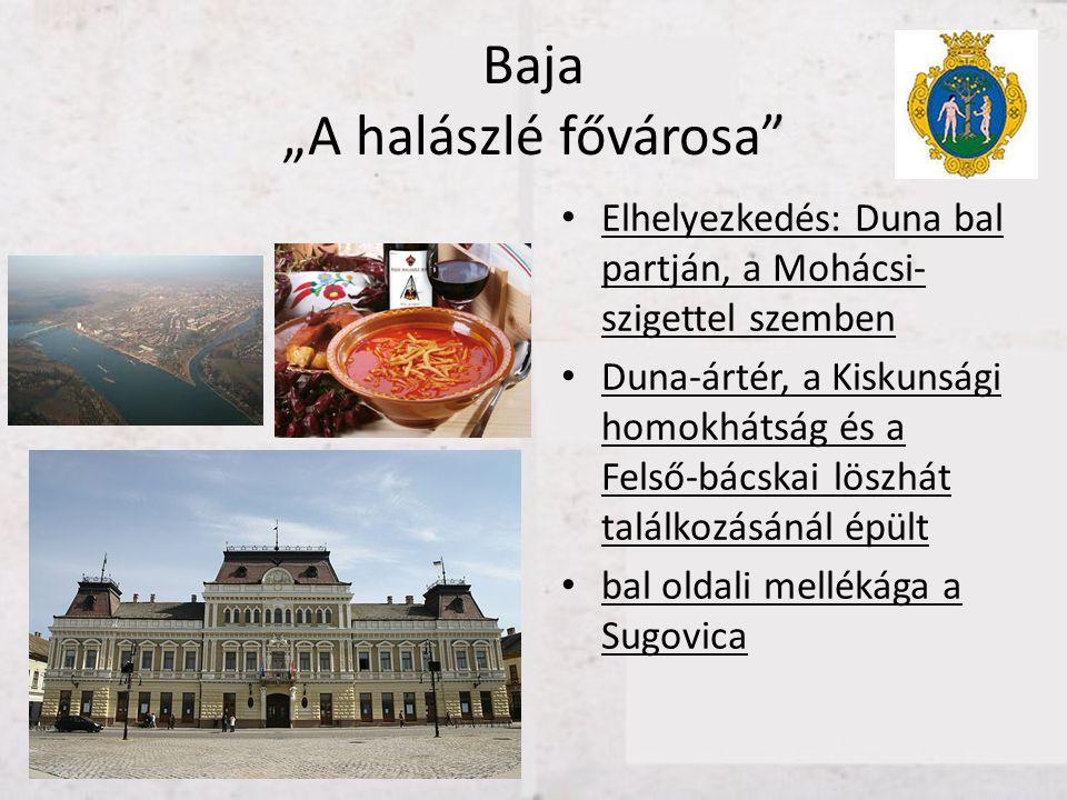 """Baja """"A halászlé fővárosa"""" • Elhelyezkedés: Duna bal partján, a Mohácsi- szigettel szemben • Duna-ártér, a Kiskunsági homokhátság és a Felső-bácskai l"""