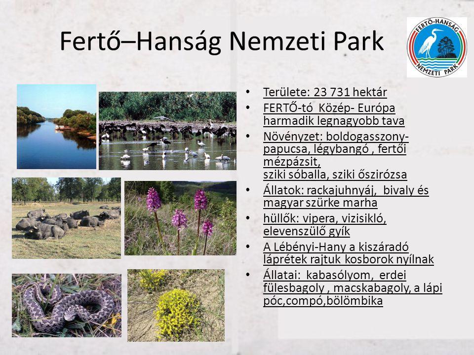 Fertő–Hanság Nemzeti Park • Területe: 23 731 hektár • FERTŐ-tó Közép- Európa harmadik legnagyobb tava • Növényzet: boldogasszony- papucsa, légybangó,