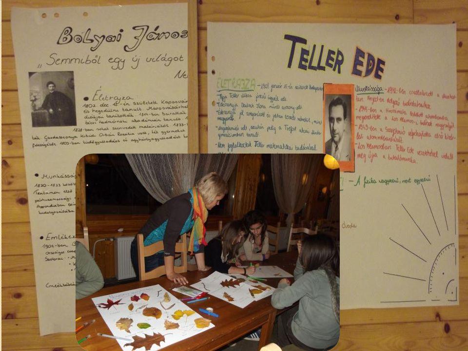 A készített plakátok, gyűjtemények kiállítása. 20