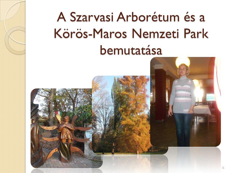 A Szarvasi Arborétum és a Körös-Maros Nemzeti Park bemutatása 6