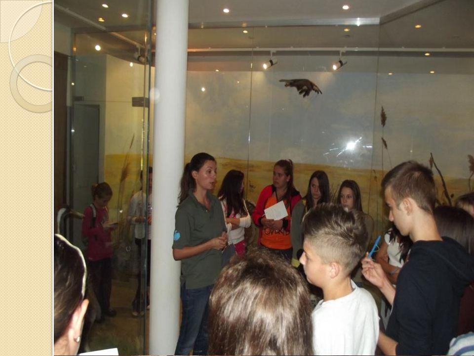 A Körös-Maros Nemzeti Park Látogatóközpontjában jártunk A Körös-Maros Nemzeti Park Látogatóközpontjában jártunk 9