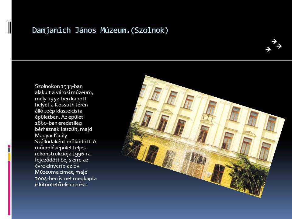 Damjanich János Múzeum.(Szolnok) Szolnokon 1933-ban alakult a városi múzeum, mely 1952-ben kapott helyet a Kossuth téren álló szép klasszicista épület