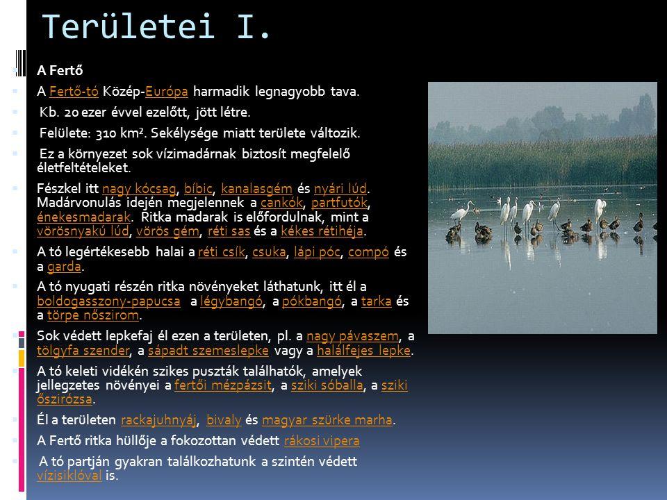 Területei I.  A Fertő  A Fertő-tó Közép-Európa harmadik legnagyobb tava.Fertő-tóEurópa  Kb. 20 ezer évvel ezelőtt, jött létre.  Felülete: 310 km².