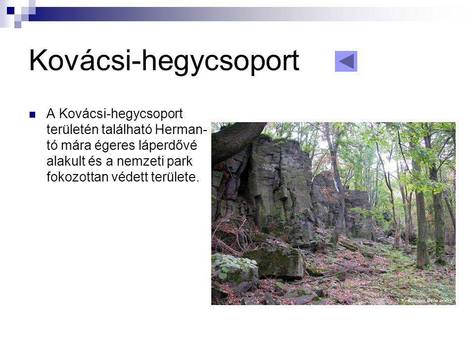 Kovácsi-hegycsoport  A Kovácsi-hegycsoport területén található Herman- tó mára égeres láperdővé alakult és a nemzeti park fokozottan védett területe.