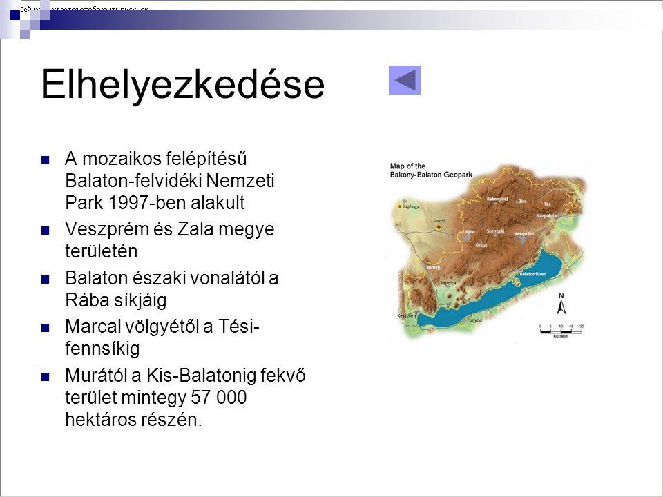 Elhelyezkedése  A mozaikos felépítésű Balaton-felvidéki Nemzeti Park 1997-ben alakult  Veszprém és Zala megye területén  Balaton északi vonalától a