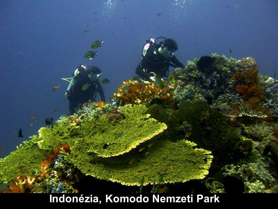 Indonézia, Komodo Nemzeti Park