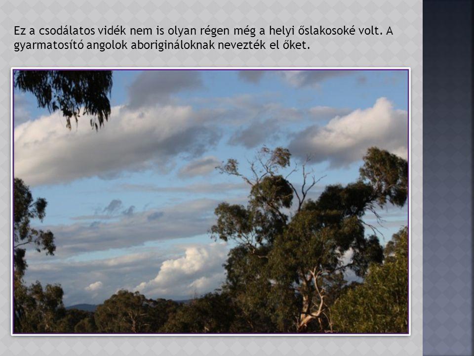 A park geológiája meghatározó külsőt jelent számára.