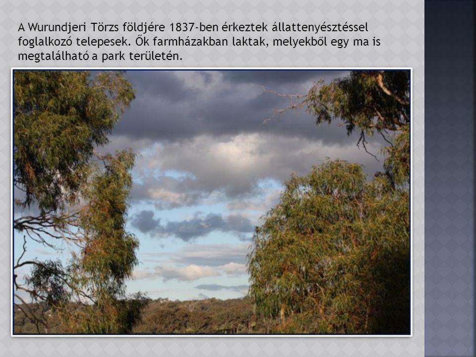 Ez a csodálatos vidék nem is olyan régen még a helyi őslakosoké volt.