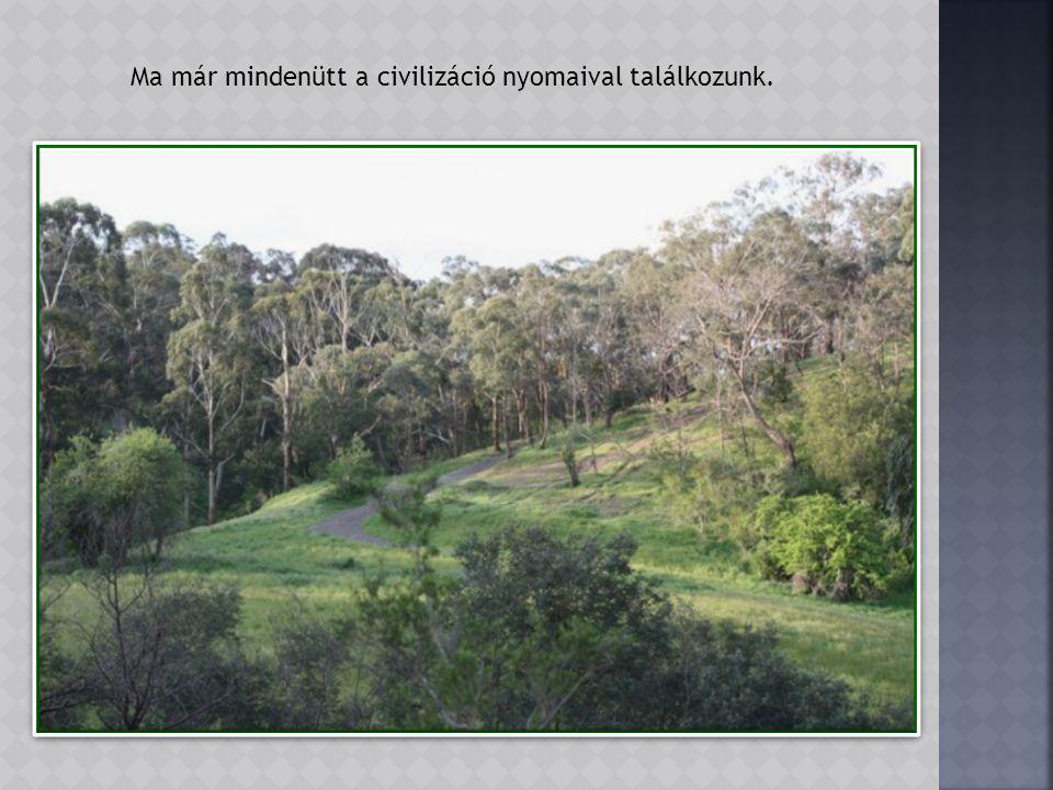 Az 1850-60-as években aranykeresés indult a parkot átszelő Plenty folyóban.
