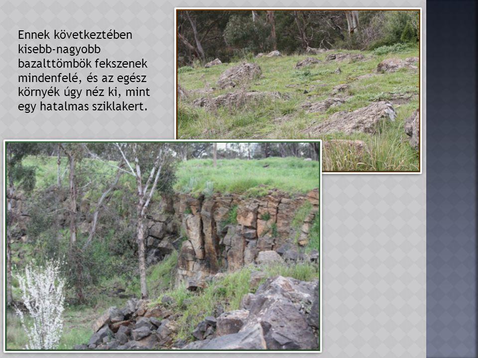 A park geológiai jellemzőit a kb.