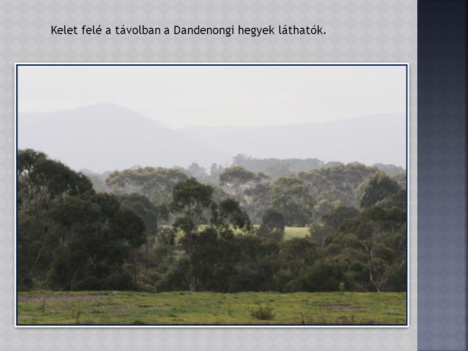 A park magasabban fekvő részeiről jól látni a környező vidéket.