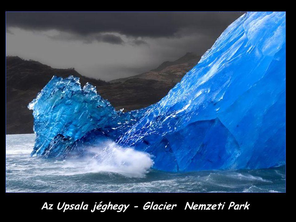 A Glacier Nemzeti Park