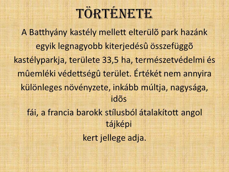Története A Batthyány kastély mellett elterülõ park hazánk egyik legnagyobb kiterjedésû összefüggõ kastélyparkja, területe 33,5 ha, természetvédelmi é