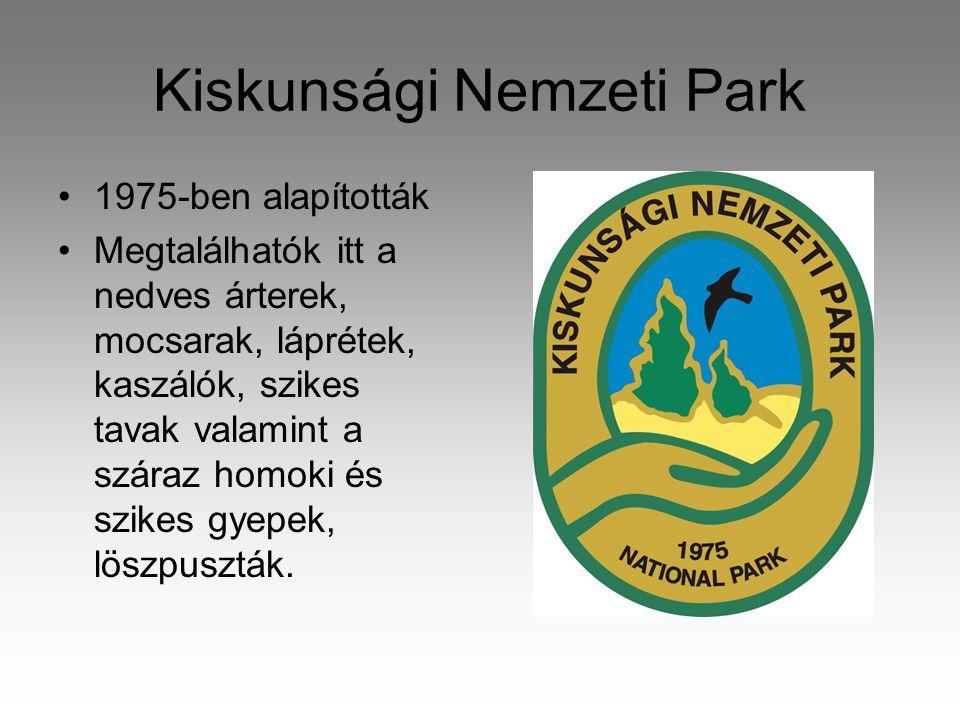 Kiskunsági Nemzeti Park •1975-ben alapították •Megtalálhatók itt a nedves árterek, mocsarak, láprétek, kaszálók, szikes tavak valamint a száraz homoki és szikes gyepek, löszpuszták.