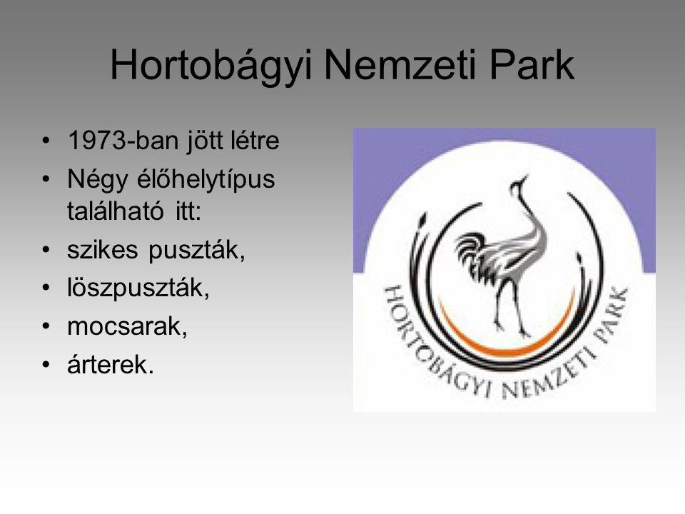 Hortobágyi Nemzeti Park •1973-ban jött létre •Négy élőhelytípus található itt: •szikes puszták, •löszpuszták, •mocsarak, •árterek.