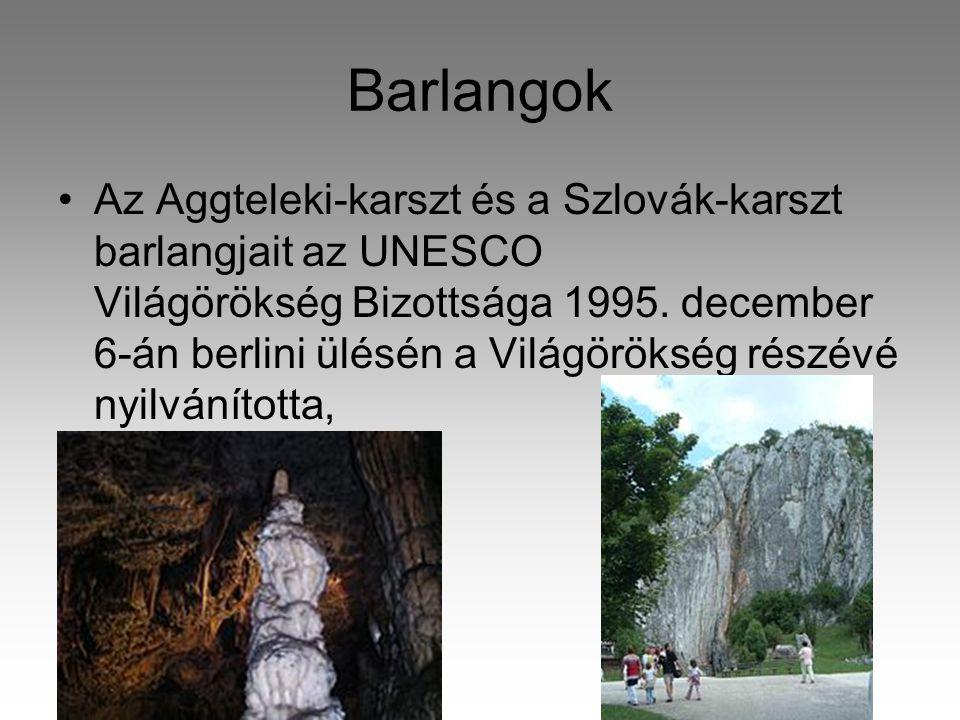 Barlangok •Az Aggteleki-karszt és a Szlovák-karszt barlangjait az UNESCO Világörökség Bizottsága 1995.