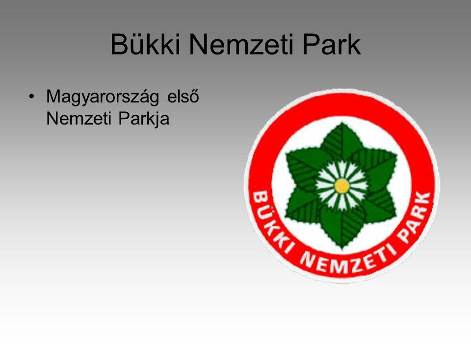 Bükki Nemzeti Park •Magyarország első Nemzeti Parkja