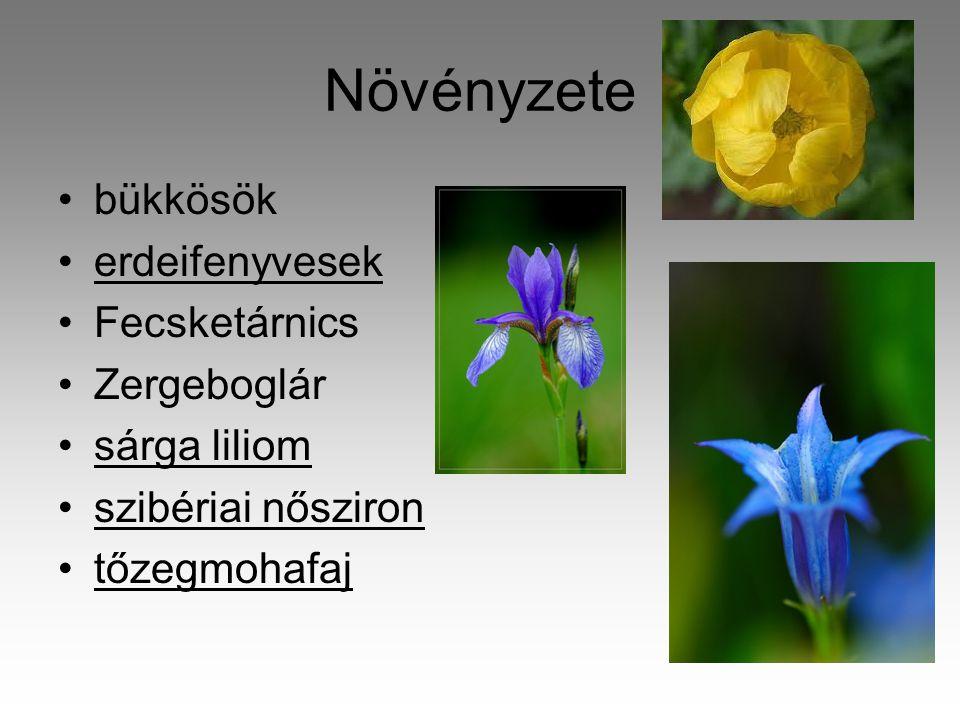 Növényzete •bükkösök •erdeifenyvesek •Fecsketárnics •Zergeboglár •sárga liliom •szibériai nősziron •tőzegmohafaj