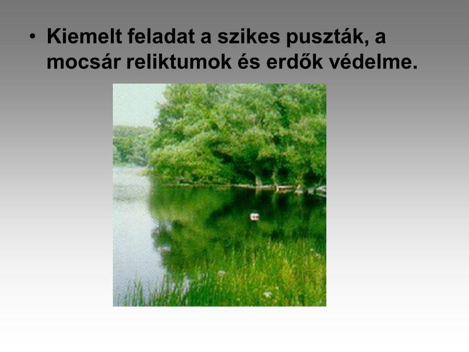 •Kiemelt feladat a szikes puszták, a mocsár reliktumok és erdők védelme.